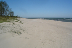 Stranden en efterårsdag