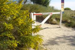 Sildestrup-2008-001